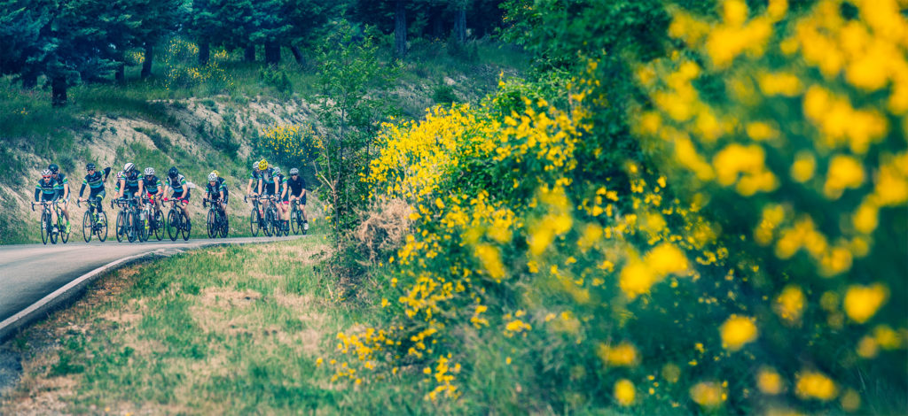 marche bike tour with bike division
